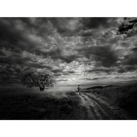 Self and Tree - Nathan Wirth