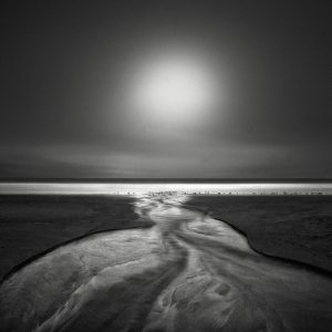 Seagulls II by Nathan Wirth a slice of silence - The Great Highway Gallery