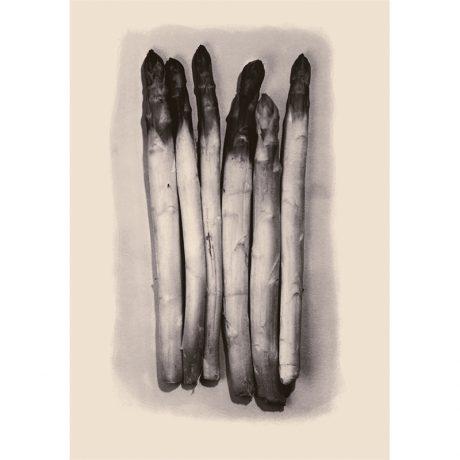 Asparagus - Mark Bugzester