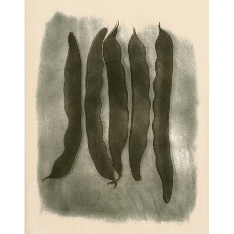 Beans - Mark Bugzester