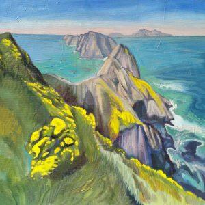 jeremy-harper-anacapa-island