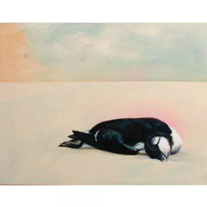 elnino-4-Hanna-Wednesday-CommonMurre-24x30