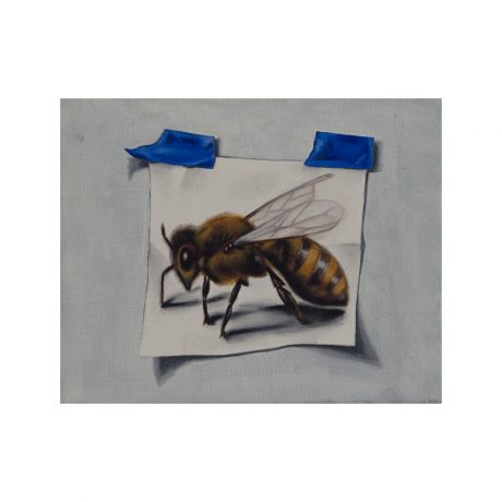 Bee-Study-JasonArnold